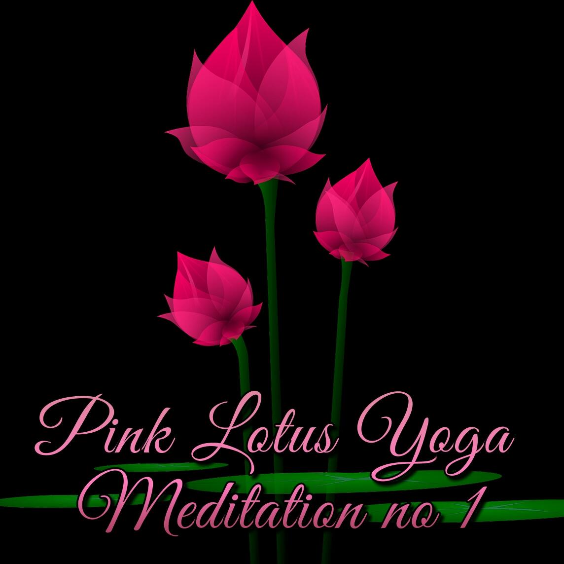Pink lotus yoga meditation no1 mp3 music download music2relax relax to pink lotus yoga meditation no1 the perfect relaxing mp3 music download specially designed to encourage and enhance meditation yoga mightylinksfo
