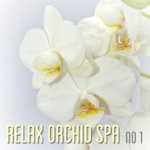 free spa music download mp3
