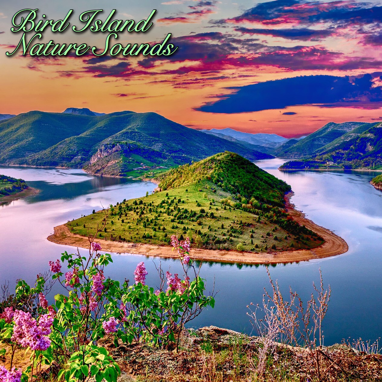Relaxing sounds of nature download