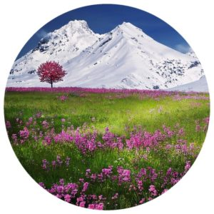 Beautiful Piano Music Album Download