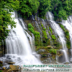 nature sounds mp3 download